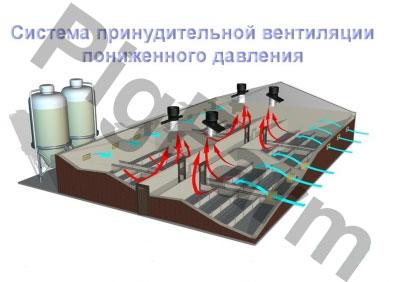 Система вентиляції для свинокомплексів